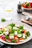 Σαλάτα φρέσκων λαχανικών με το τυρί φέτας, το φρέσκο μαρούλι, τις ντομάτες κερασιών, το κόκκινα κρεμμύδι και το πιπέρι Στοκ Εικόνες