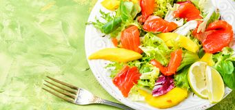 Σαλάτα ψαριών με το σολομό και τα λαχανικά Στοκ φωτογραφία με δικαίωμα ελεύθερης χρήσης