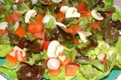 σαλάτα 4 Στοκ Φωτογραφία
