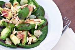 σαλάτα avacado Στοκ εικόνα με δικαίωμα ελεύθερης χρήσης