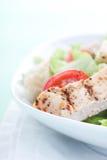 Σαλάτα Caesar κοτόπουλου στοκ εικόνα με δικαίωμα ελεύθερης χρήσης