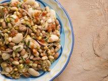 σαλάτα tuscan φασολιών Στοκ Εικόνες