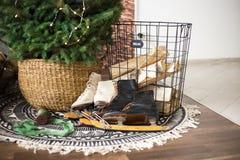 Σαλάχια κάτω από το δέντρο νέο έτος δώρων Χριστουγένν&ome στοκ εικόνα με δικαίωμα ελεύθερης χρήσης