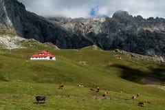 Σαλέ πραγματικό στο εθνικό πάρκο Picos DA Ευρώπη Στοκ φωτογραφία με δικαίωμα ελεύθερης χρήσης