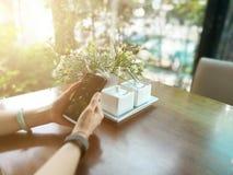 Σαλιασμένος κινητός σε διαθεσιμότητα των γυναικών στον καφέ Στοκ εικόνα με δικαίωμα ελεύθερης χρήσης
