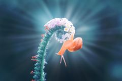 Σαλιγκάρια, σαλιγκάρια στα λουλούδια με ένα μπλε υπόβαθρο στοκ φωτογραφίες