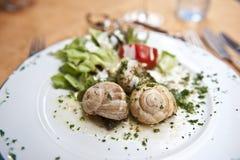 σαλιγκάρι κουζίνας Στοκ εικόνες με δικαίωμα ελεύθερης χρήσης