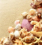 σαν στενά κοχύλια θάλασσας άμμου ανασκόπησης επάνω παραλιών ακτών θερινή κυματωγή πετρών άμμου της Κύπρου μεσογειακή Στοκ εικόνα με δικαίωμα ελεύθερης χρήσης