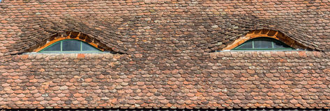 Σαξονική στέγη Transylvanian Στοκ εικόνα με δικαίωμα ελεύθερης χρήσης