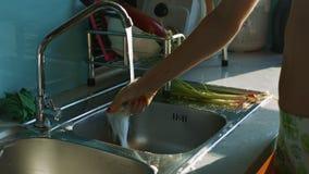 Σαπουνισμένο ξεβγάλματα σφουγγάρι νοικοκυρών κάτω από τη βρύση κουζινών απόθεμα βίντεο