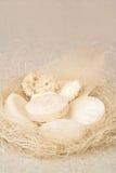σαπούνια λουτρών στοκ εικόνες