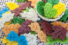 Σαπούνι ευγένειας Biolagical κατ' οίκον γίνοντα Στοκ Εικόνες