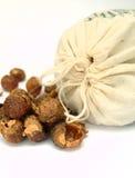 σαπούνι καρυδιών στοκ φωτογραφία με δικαίωμα ελεύθερης χρήσης