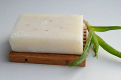 Σαπούνι με aloe Στοκ Εικόνες