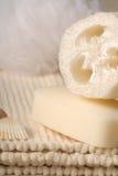 σαπούνι luffa στοκ φωτογραφίες με δικαίωμα ελεύθερης χρήσης