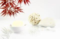 Σαπούνι 1 Wellness στοκ εικόνες