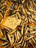 Σαρδέλλες - αντσούγιες στην πώληση στοκ φωτογραφία με δικαίωμα ελεύθερης χρήσης