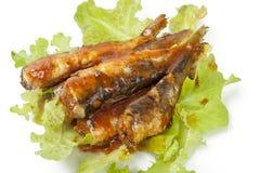 Σαρδέλλες στη σάλτσα ντοματών στοκ εικόνα
