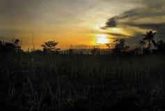 Σας δείτε! (Ηλιοβασίλεμα) στοκ φωτογραφίες