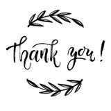 Σας ευχαριστούμε λαναρίζει το διανυσματικό πρότυπο Γράφοντας μάνδρα βουρτσών χεριών σύγχρονη Στοκ φωτογραφίες με δικαίωμα ελεύθερης χρήσης