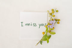 Σας χάνω λουλούδια καρτών και σιταριού μηνυμάτων Στοκ Εικόνες