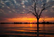 Σαφάρι βαρκών στη λίμνη manze στην Τανζανία στο ηλιοβασίλεμα Στοκ Εικόνα