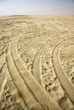 Σαφάρι ερήμων Στοκ Φωτογραφία