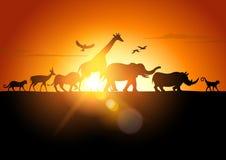Σαφάρι ηλιοβασιλέματος διανυσματική απεικόνιση