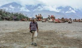 Σαφάρι καμηλών στην κοιλάδα Nubra Ladakh, Ινδία στοκ φωτογραφίες