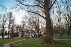 Σαφές βράδυ άνοιξη στο πάρκο του μουσείου Kolomenskoye, Μόσχα κτημάτων Στοκ Εικόνες