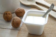 Σαφές γιαούρτι σε ένα ύφασμα σάκων με μερικά καρύδια Στοκ φωτογραφίες με δικαίωμα ελεύθερης χρήσης