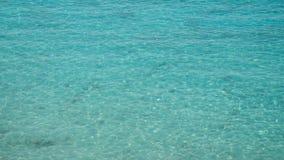 Σαφές καλοκαίρι θαλάσσιου νερού παραδείσου τροπικό απόθεμα βίντεο