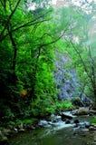 σαφές νερό ποταμού βουνών στοκ φωτογραφία με δικαίωμα ελεύθερης χρήσης