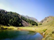 Σαφές νερό Cristal σε μια πράσινη λίμνη στοκ εικόνα