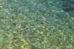 Σαφές υπόβαθρο θάλασσας Στοκ Φωτογραφίες