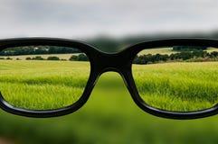 Σαφές όραμα μέσω μαύρα πλαισιωμένα eyeglasses Στοκ Εικόνα