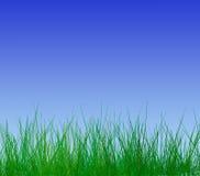 σαφής άνοιξη ουρανού απεικόνιση αποθεμάτων