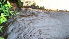 Σαφής ροή της ροής νερού και του βράχου ποταμών απόθεμα βίντεο