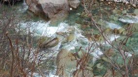Σαφή πράσινα νερά φιλμ μικρού μήκους
