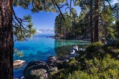 Σαφή, τυρκουάζ νερά νερών surrounTahoe ` s Tahoe ` s τα σαφή, τυρκουάζ που περιβλήθηκαν από το δάσος πεύκων από το δάσος και τα β Στοκ Εικόνα