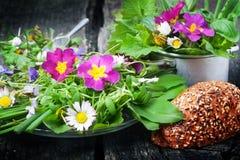 Σαλάτα άνοιξη, άγρια χορτάρια, εδώδιμα λουλούδια Στοκ Εικόνα