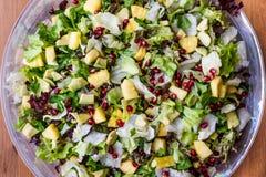 Σαλάτα ανανά με το ρόδι, τη σταφίδα και τα πράσινα στο τόξο γυαλιού στοκ εικόνες