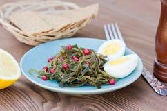 Σαλάτα από τη θάλασσα Kale, υγιή τρόφιμα Στοκ φωτογραφία με δικαίωμα ελεύθερης χρήσης