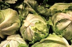 Σαλάτα, λαχανικά, τρόφιμα, συστατικό, οργανικό Στοκ εικόνες με δικαίωμα ελεύθερης χρήσης