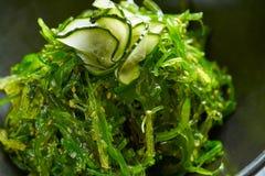 Σαλάτα αλγών με το σουσάμι και τη σόγια αγγουριών Στοκ Φωτογραφίες