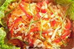Σαλάτα βιταμινών Στοκ εικόνες με δικαίωμα ελεύθερης χρήσης