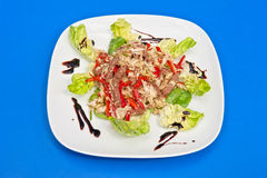Σαλάτα βόειου κρέατος ψητού Στοκ Εικόνα
