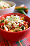 Σαλάτα ζυμαρικών με τα κολοκύθια, το κρεμμύδι, το σκόρδο, το τσίλι και τη μοτσαρέλα Στοκ Εικόνες