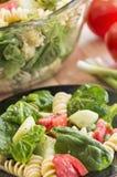Σαλάτα ζυμαρικών σπανακιού και rotini Στοκ Φωτογραφίες