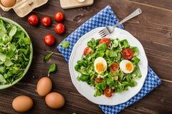 Σαλάτα μαρουλιού αρνιών, σκληρός-βρασμένα αυγά Στοκ Εικόνα